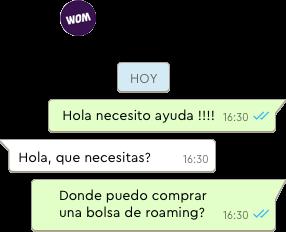 Ejemplo de ayuda en Whatsapp